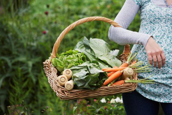 Kannattaako kasvisten sisältämien nitraattien tai nitriittien vältteleminen?
