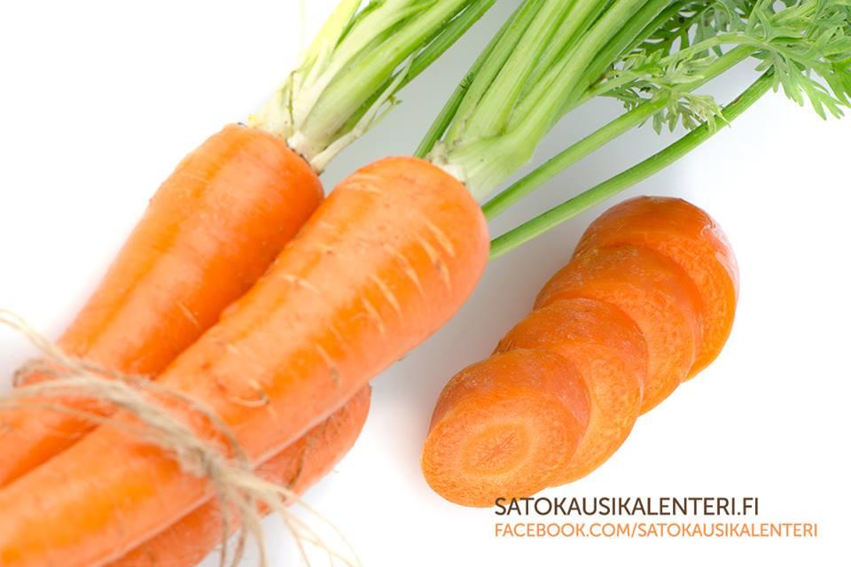 Porkkana Vitamiinit