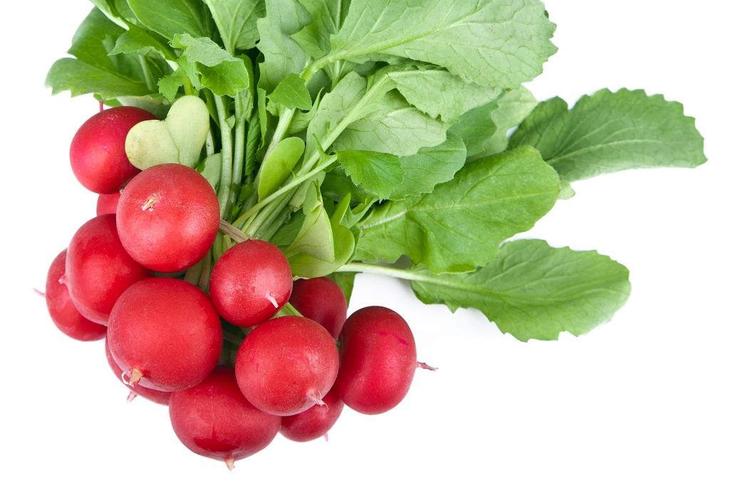 Suurin osa retiisin ravinteista sijaitsee naateissa, joten niitä ei kannata heittää pois.