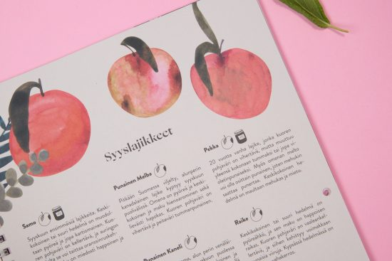 Kotimaiset hedelmät – omena ja päärynä